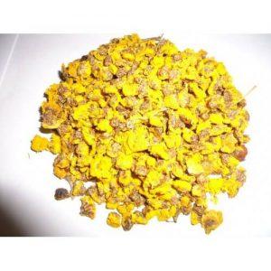 Cúc vàng khô