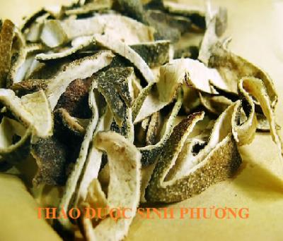 Thanh Bì