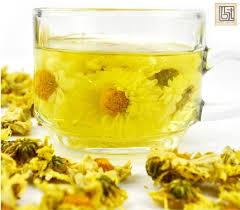 Trà hoa cúc vàng tăng cường khả năng miễn dịch của cơ thể