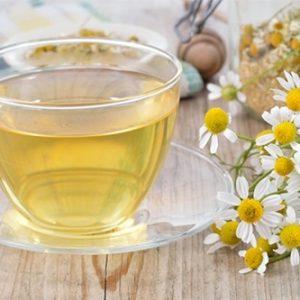 Trà hoa cúc trắng là loài hoa thần dược trị các chứng nhiệt độc