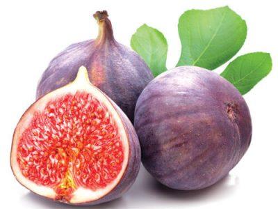 Quả vả hỗ trợ điều trị bệnh tiểu đường, ngăn ngừa thiếu máu, giúp xương chắc khỏe