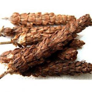 Hạ khô thảo giúp thông tiểu tiện, xích bạch đới, tràng nhạc mã đao.