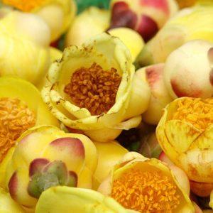 Kim hoa trà làm tăng cường khả năng giải độc cho gan.
