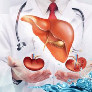 Khúng khéng có tác dụng bảo vệ gan