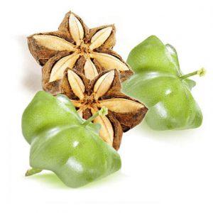 Hạt sacha inchi chống viêm nhẹ, giúp ngăn ngừa vẩy nến và chàm.